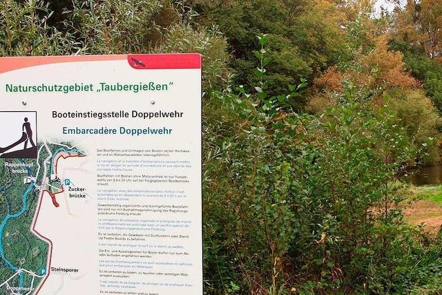 Das Naturschutzgebiet Taubergießen soll wieder einen Ranger bekommen