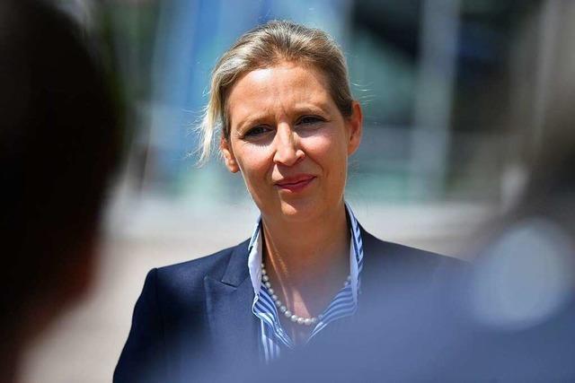 Alice Weidel verzichtet auf AfD-Spitzenkandidatur – zunächst