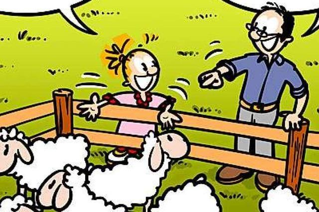 Lucy Backfisch: Schafe zählen