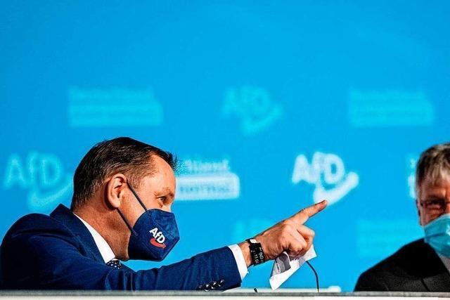 Die AfD hält sich für normal