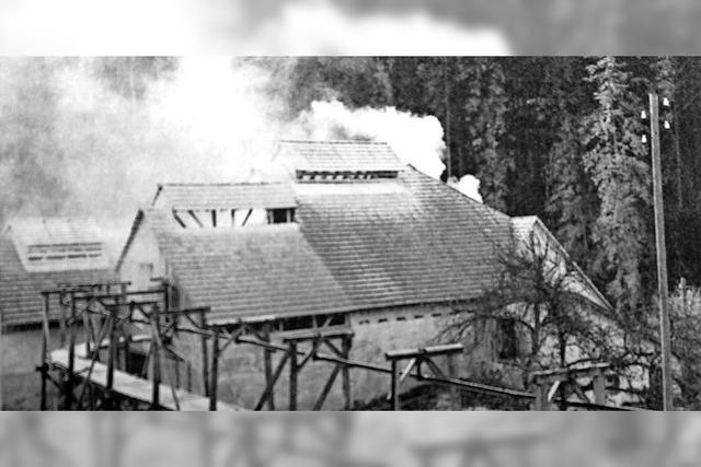 Geschichte des Gipsabbaus im Film