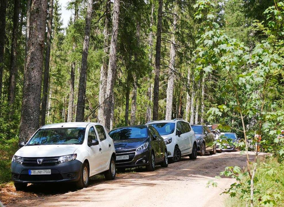 Begehrt als Parkplatz sind  alle Waldw...dgfällweihers, an schönen Sommertagen.  | Foto: Eva Korinth
