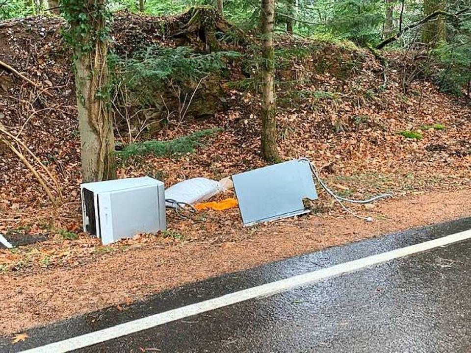 Ohne Worte – das lag gestern im Kandelwald an der Straße!  | Foto: Thomas Sandfort
