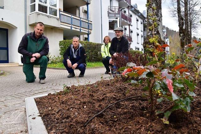 Im Schopfheimer Wohngebiet Bifig blühen bald die Kanalufer