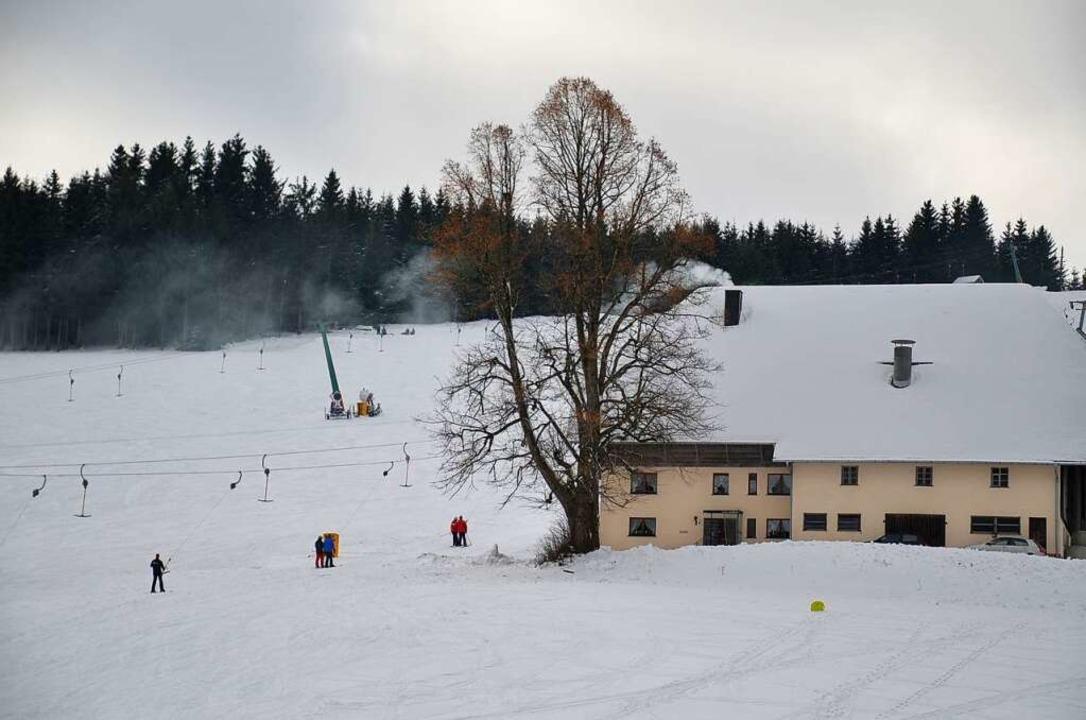 Die große Linde des Schneehofs im Winter.    Foto: alexandra wehrle