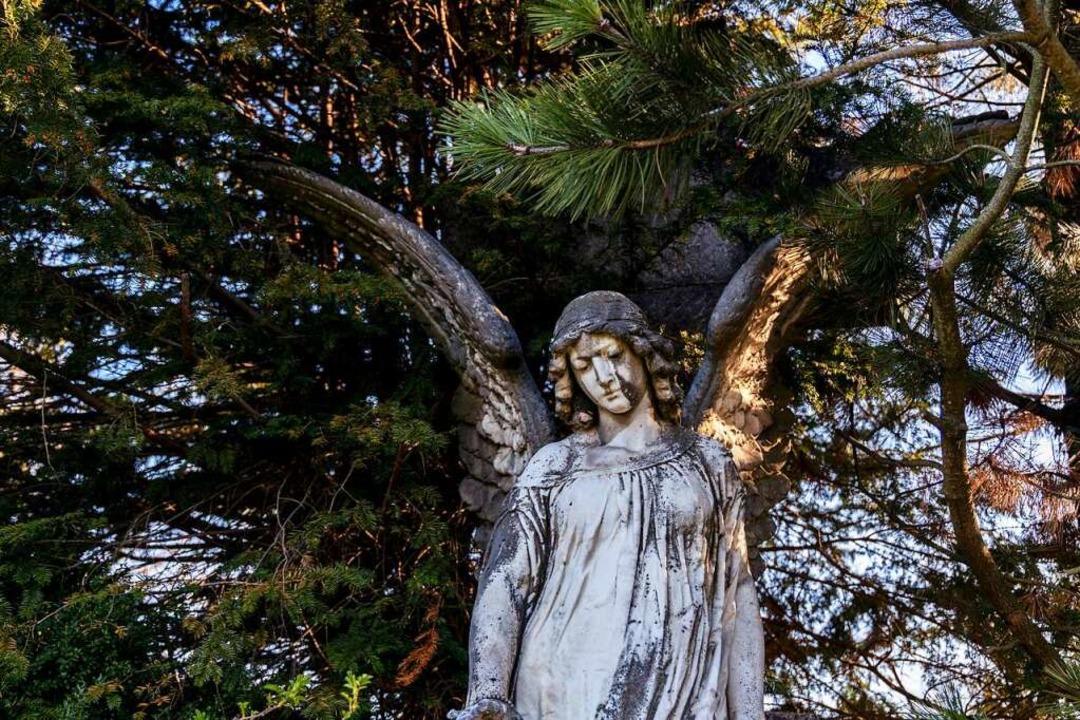Das Leben auch mal vom Ende her denken...n  auf dem Hauptfriedhof in  Freiburg.  | Foto: Joss Andres