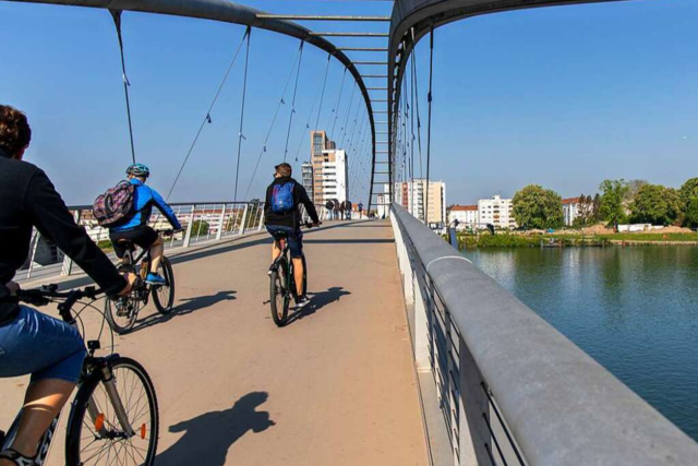Der Rhein - Leben am Fluss