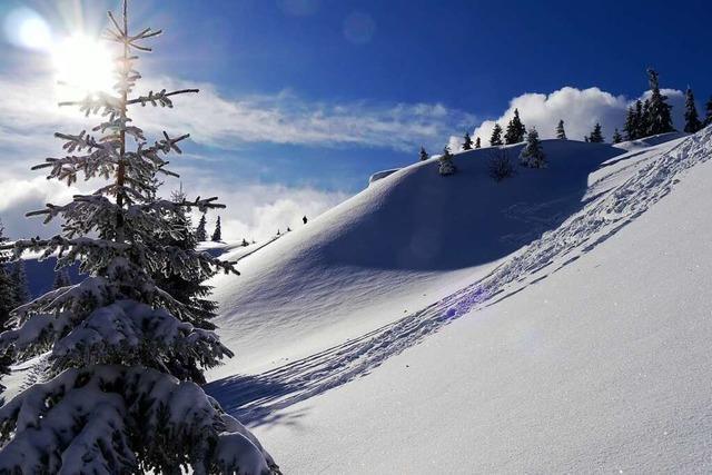 Ein Blick ins Winterbilderbuch am Feldberg