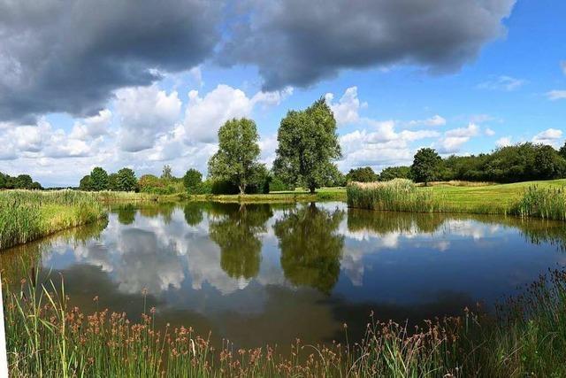 Respektabler Wolkentag in Munzingen