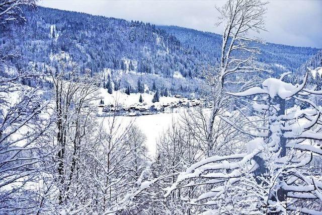 Winterpracht in Menzenschwand