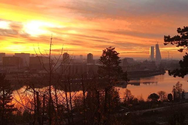 Die Basler Roche-Türme im Sonnenuntergang