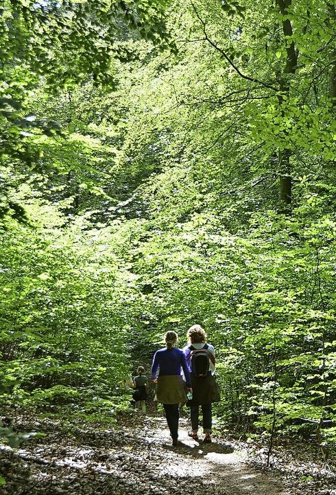 Gute Luft und frisches Grün  | Foto: Uwe Zucchi (dpa)