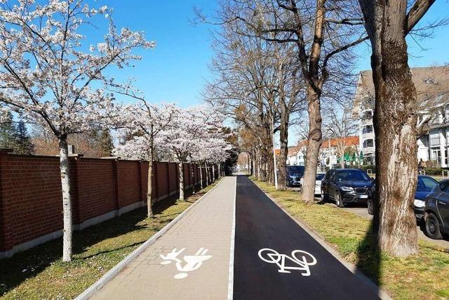 Verkehrsplaner legen Kompromiss für Radweg-Umbau am Freiburger Hauptfriedhof vor