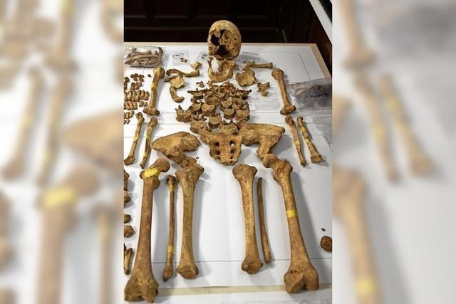 285 Skelette auf Baustelle in Freiburg gefunden