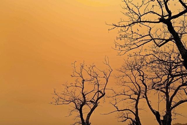 Als der Himmel plötzlich orangefarben wurde