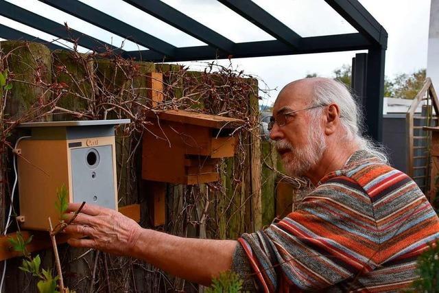 Pensionierter Biologe aus Grenzach-Wyhlen filmt Meisen in ihrem Nest