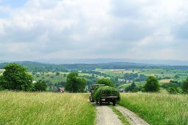 Große Dörferrunde auf dem Dinkelberg mit herrlicher Aussicht