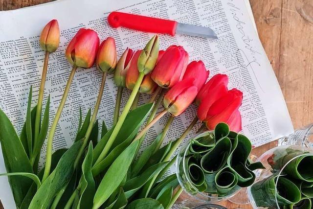 Lassen Sie sich inspirieren bei einem Online-Floristik-Workshop!