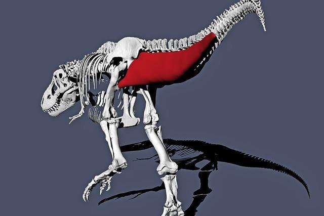 Lahme Ente Tyrannosaurus rex