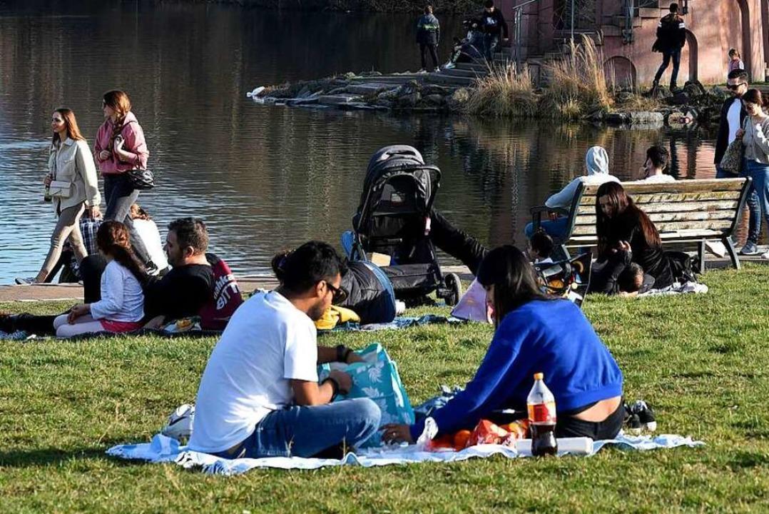 Am Seepark soll im August ein Picknick-Konzert über mehrere Tage stattfinden.  | Foto: Thomas Kunz