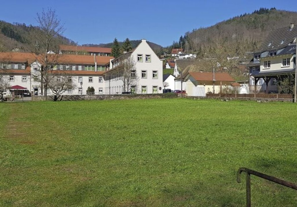 Auf der Badwiese in Ettenheimmünster s...m Bürgerbegehren  das Projekt kippen.   | Foto: Christian Kramberg