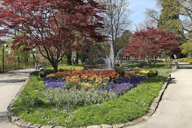 Zwinger soll als englischer Landschaftspark erscheinen