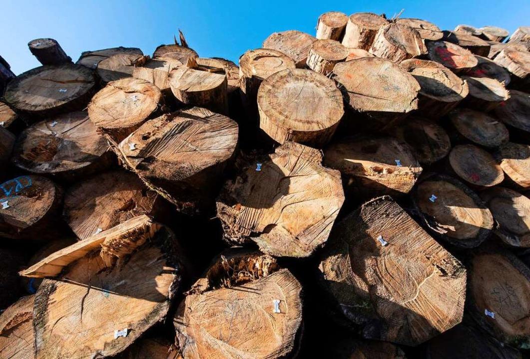 Dürre, Käfer, Stürme: 2020 gab es zu viel Holz auf dem Markt.    Foto: Patrick Seeger