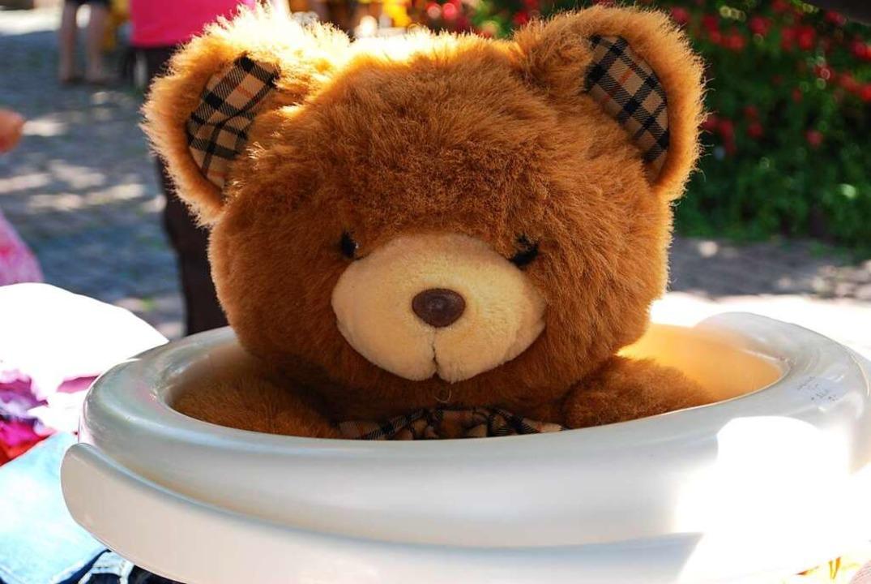 Diesen gebrauchten Teddy hat ein Flohmarktverkäufer in eine Schüssel gesetzt.    Foto: Sylvia-Karina Jahn