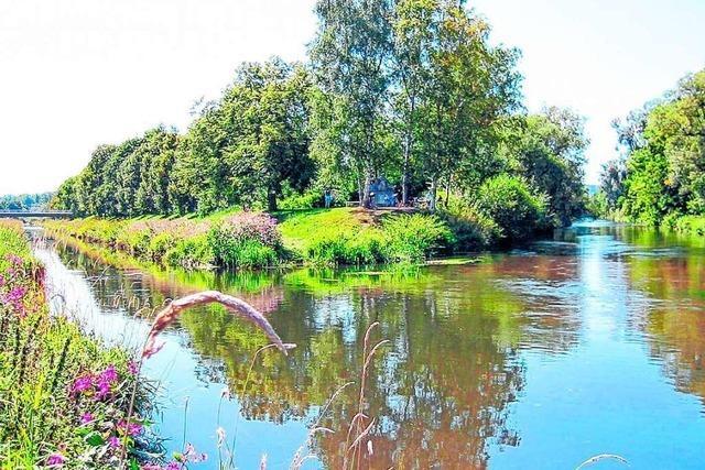 Der Donauursprung ist eine ewige Quelle des Streits zwischen Donaueschingen und Furtwangen