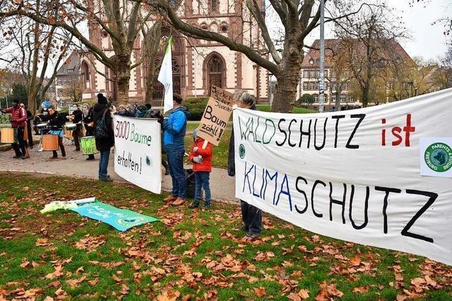 Menschen in Freiburg wollen lieber Strom sparen als vegan essen