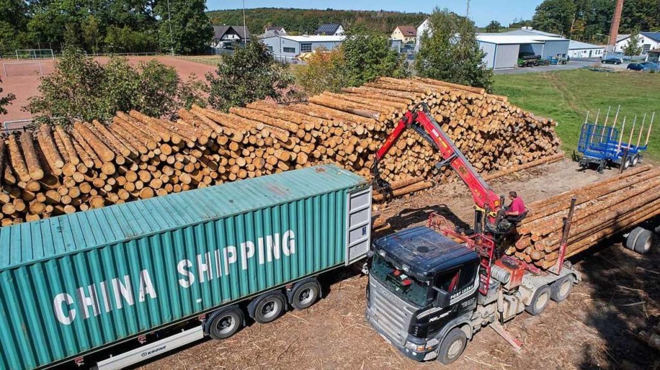 Fichtenholz wird für den Transport nac...profitieren Waldbesitzer bisher nicht.    Foto: Thomas Frey