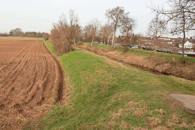 Herbolzheim will ein grünes Band aus Biotopen schaffen