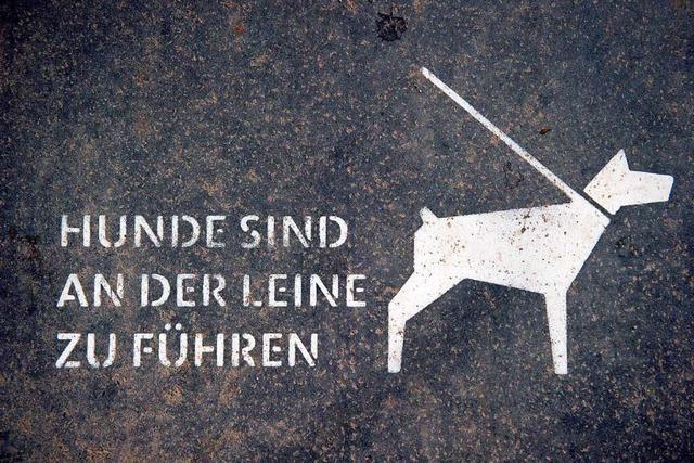 Leinenpflicht für Hunde gilt in Weil am Rhein nicht überall