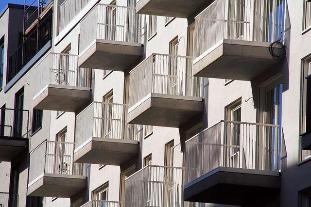 Haben Immobilienpreise zu wenig Gewicht bei der Inflation?