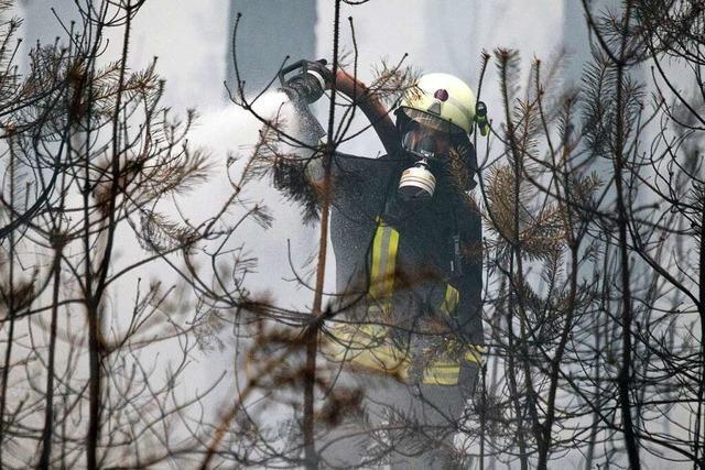 Maulburger Feuerwehrmänner sind Experten für Waldbrände
