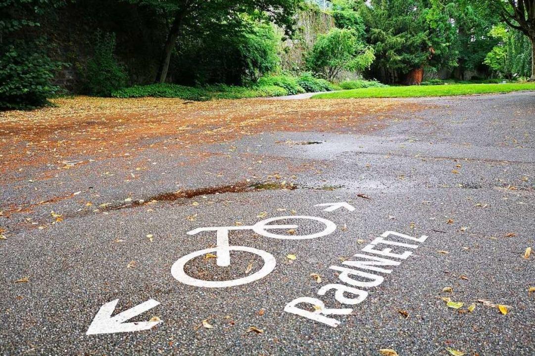 Das Offenburger Radwegenetz soll nach ...zerinnen und Nutzer verbessert werden.  | Foto: Ralf burgmaier