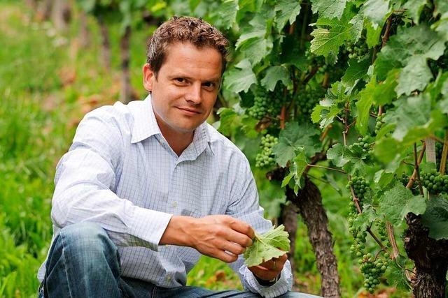 Alexander Laible, Inhaber eines Weinguts in Durbach