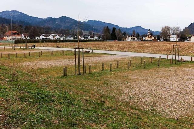 Waldkircher Baugebiet