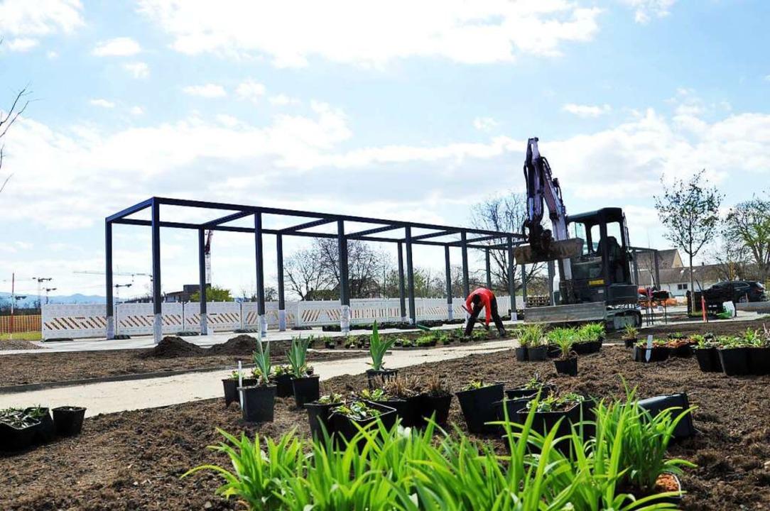 Viel ist in den vergangenen Jahren bei... Derzeit werden die Anlagen bepflanzt.  | Foto: Landesgartenschau 2022 Neuenburg am Rhein GmbH