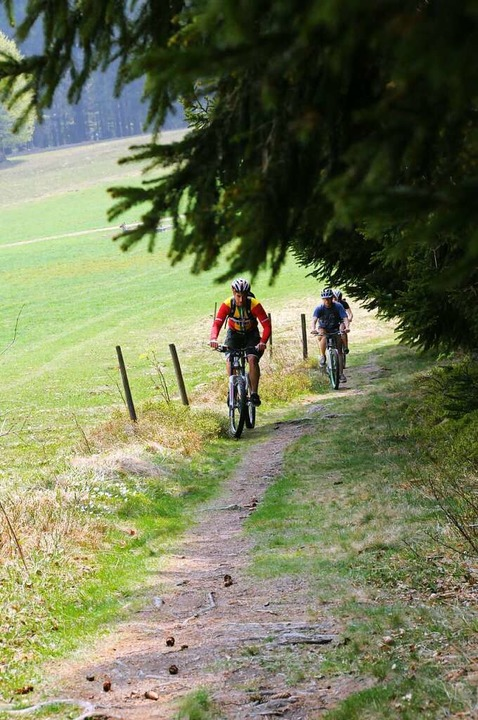 "Die""Distance Rallye Black Forest...as heimische Mittelgebirge bezwingbar.  | Foto: Andrea Schiffner"