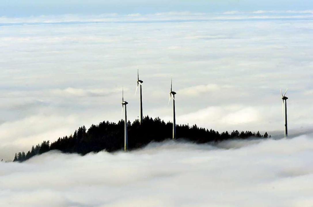"""""""Grüne"""" Fonds melden Rekordzuflüsse.    Foto: Rolf Haid"""