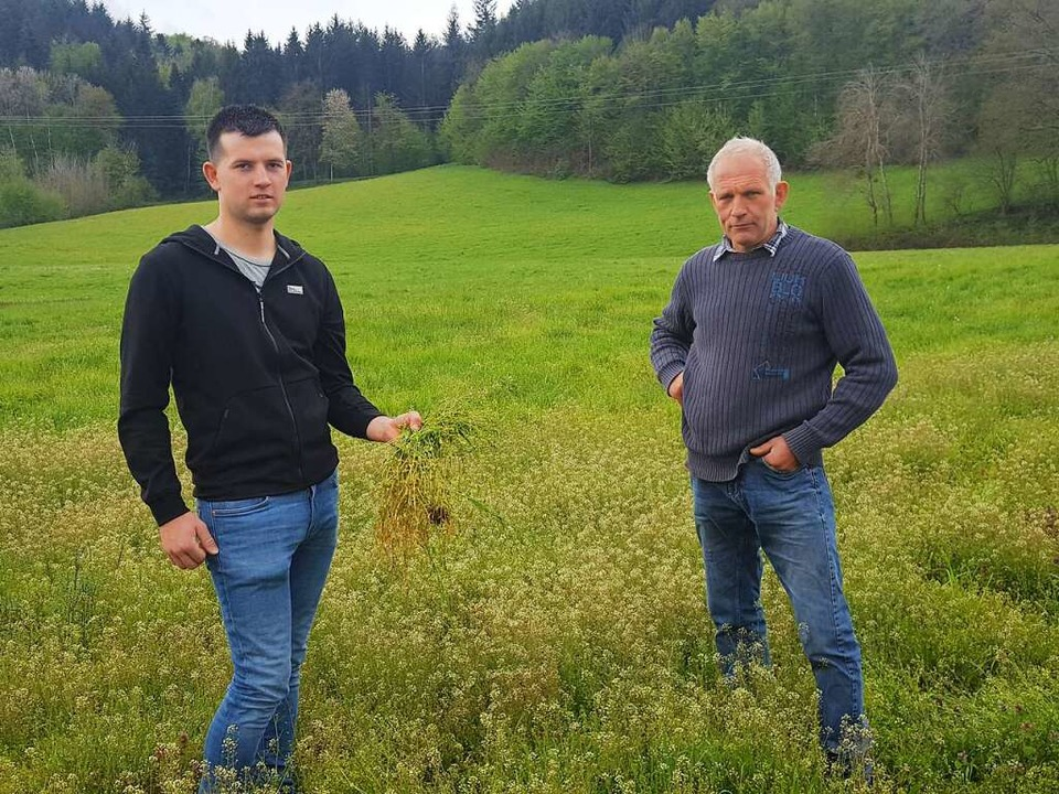Marco und Robert Himmelsbach    Foto: Beate Zehnle-Lehmann
