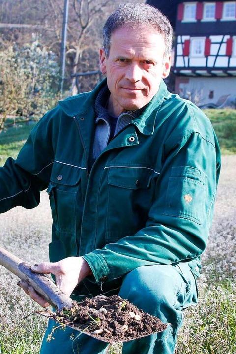 Schaufelweise holt Benedikt Himmelsbac...l unbrauchbarem Unkraut Hirtentäschel.    Foto: Heidi Fößel