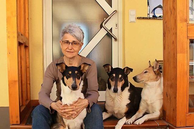 Hundetrainerin warnt davor, Hunde nur als Corona-Begleiter zu kaufen