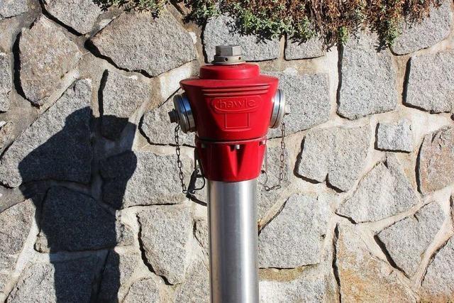 Bei der Löschwasserversorgung gibt es auf dem Dinkelberg Probleme