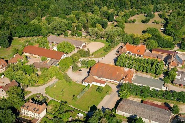 Aufatmen im Freiburger Mundenhof nach Verdacht auf Geflügelpest