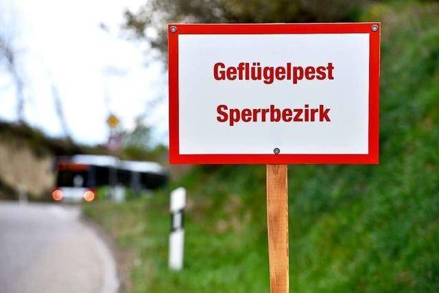 Freiburg hebt die Sperrbezirke auf