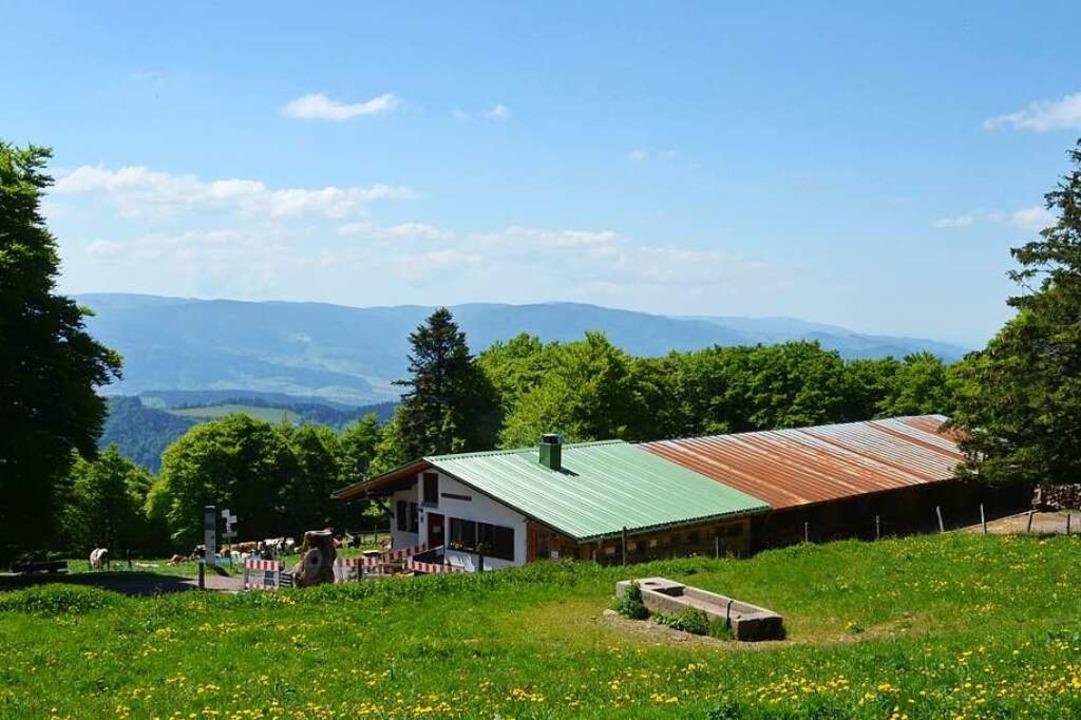 An der Gummenhütte unterhalb des Kande...gs Speisen und Getränke zum Mitnehmen.    Foto: Max Schuler