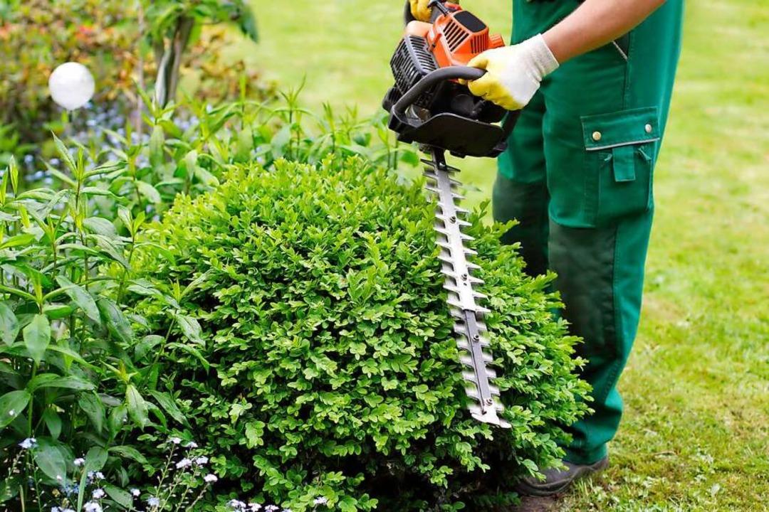 Mieter dürfen im Garten ein Gerätehaus...spiel eine Heckenschere zu deponieren.  | Foto: fotolia.com/M&S Fotodesign