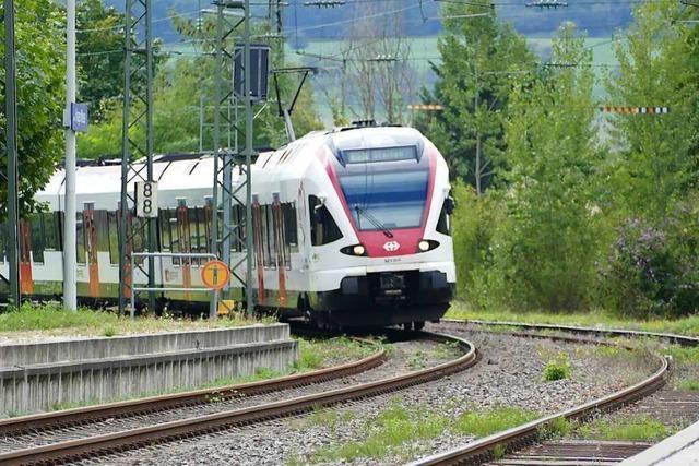 Die Stadt Lörrach will den S-Bahn-Ausbau vorantreiben